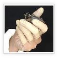 Bao ngón tay cao su loại thường